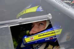 Giandomenico Basso (Peugeot 207 #2, Movisport), ITALIAN RALLY CHAMPIONSHIP
